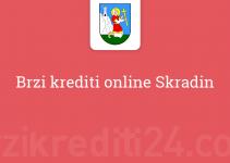 Brzi krediti online Skradin