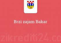 Brzi zajam Bakar