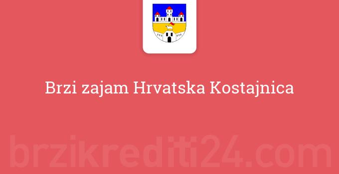 Brzi zajam Hrvatska Kostajnica