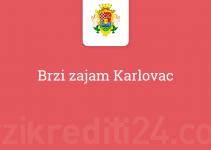 Brzi zajam Karlovac