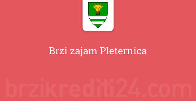 Brzi zajam Pleternica