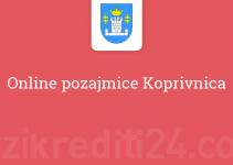 Online pozajmice Koprivnica