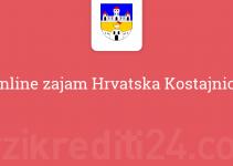 Online zajam Hrvatska Kostajnica