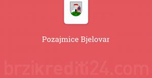 Pozajmice Bjelovar
