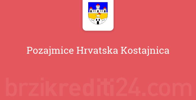 Pozajmice Hrvatska Kostajnica