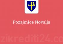 Pozajmice Novalja