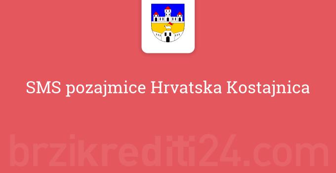 SMS pozajmice Hrvatska Kostajnica